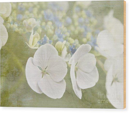 Hydrangea Dreams Wood Print