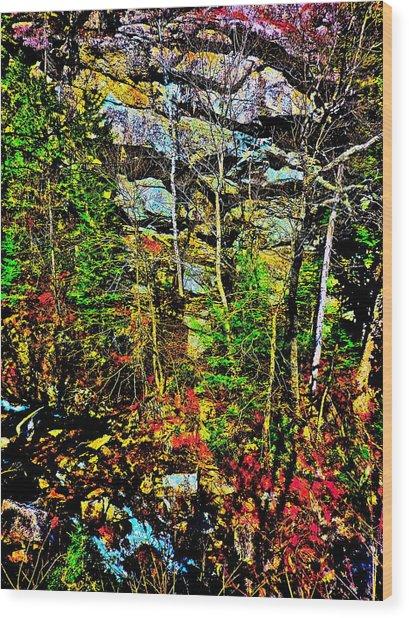 Hyper Grafton 11 Wood Print by George Ramos