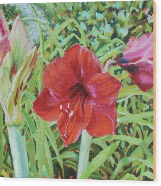 I Love Amaryllis Wood Print