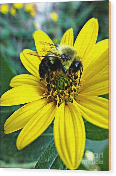 I Love Pollen Wood Print by Maria Scarfone