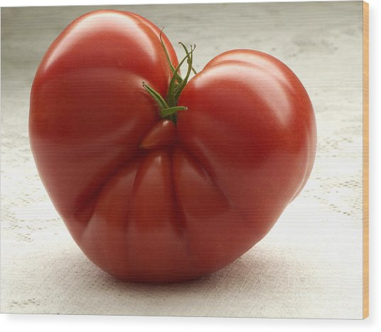 I Love Tomatoes Wood Print by Sharon Talson