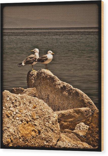 Afitos, Greece - I Think We're Alone ... Wood Print