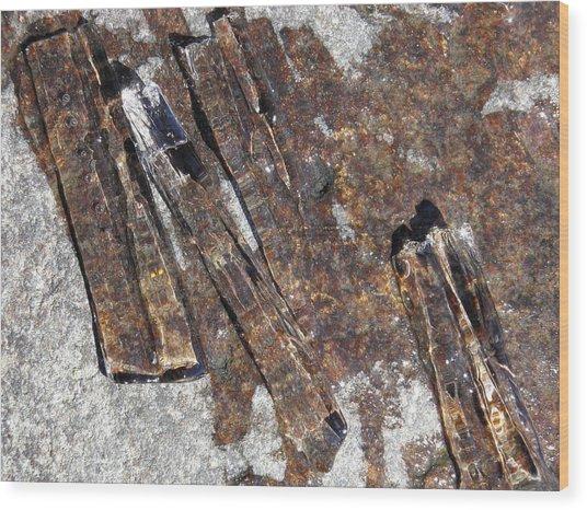 Ice Crystals 2 Wood Print