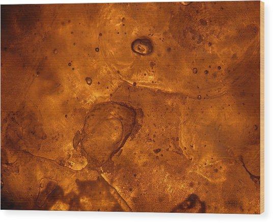 Icecape Wood Print