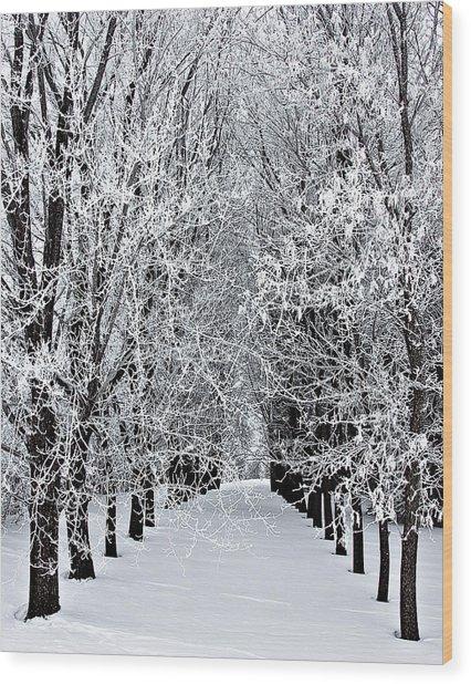 Icy Gateway Wood Print
