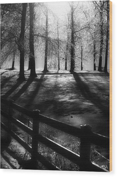 Icy Morning Wood Print