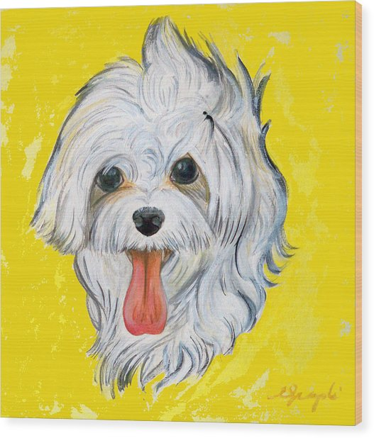 Icy The Maltese Wood Print by Ann Marie Napoli