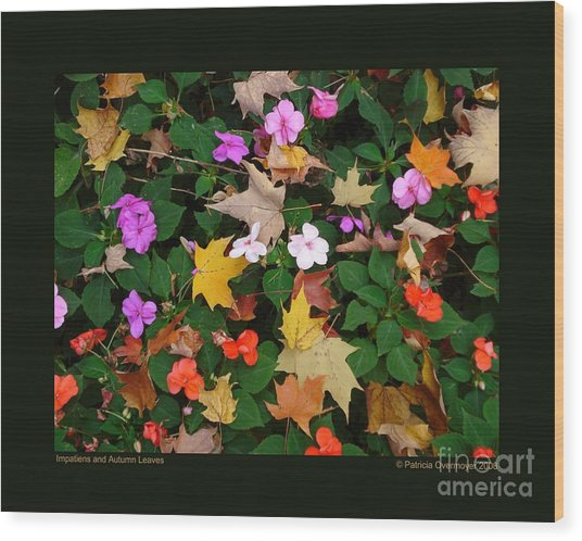 Impatiens And Autumn Leaves Wood Print