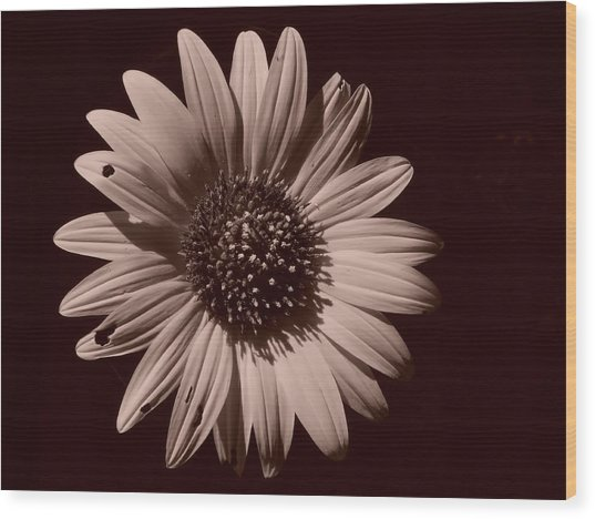 Imperfection Wood Print