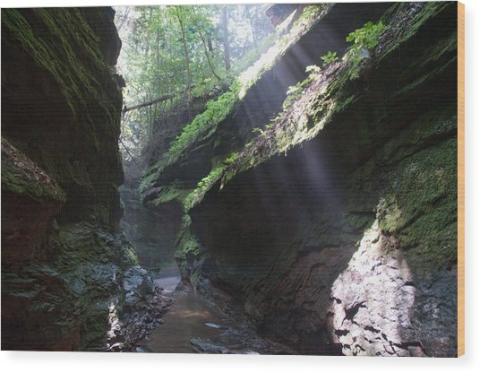 In The Cleft Of The Rock Wood Print