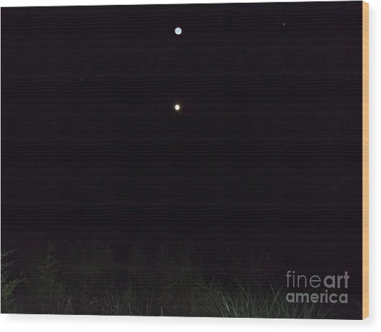 In The Company Of The Moon Wood Print