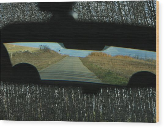 In The Rear View Wood Print