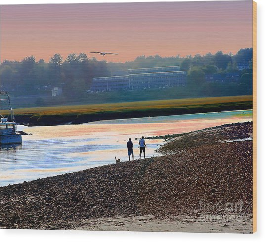 Incoming Gull From Dog Beach Series Wood Print
