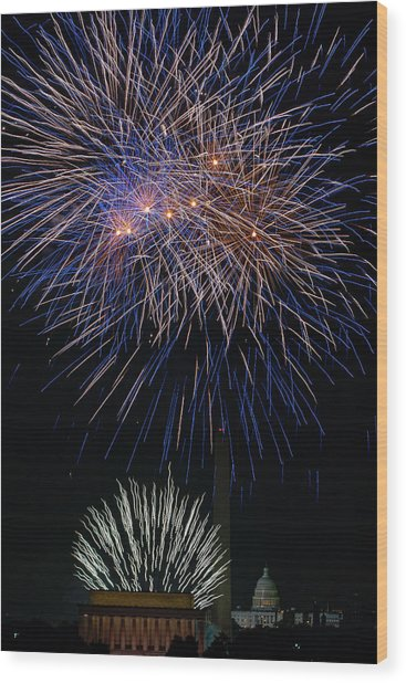 Independence Day In Dc 5 Wood Print by David Hahn