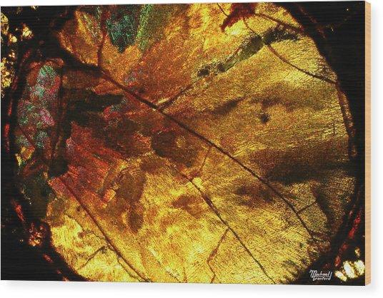 Indian Fall  Wood Print