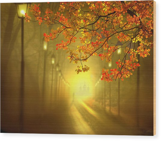 Into The Light Wood Print by Igor Zenin