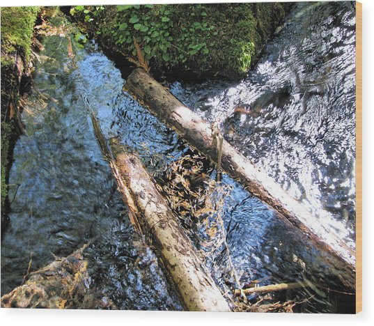 Into The Mckenzie Wood Print