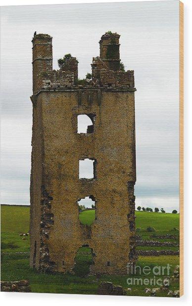 Ireland- Castle Ruins II Wood Print