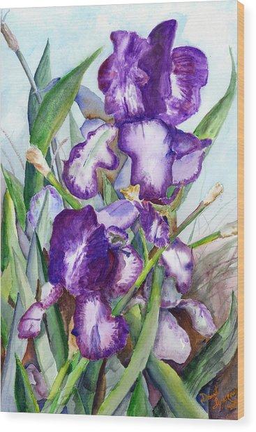 Iris Eyes Wood Print by David Ignaszewski