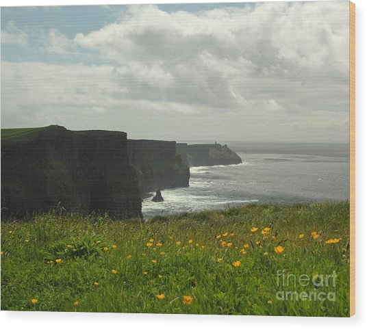 Irish Coast Cliffs Of Moher In Spring Ireland Wood Print