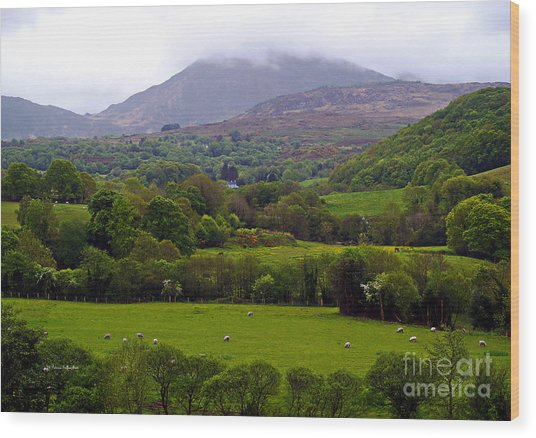 Irish Countryside II Wood Print