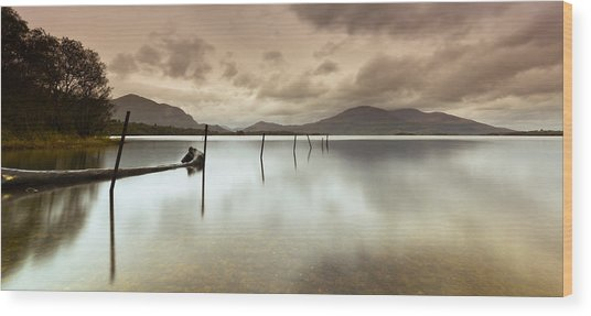 Irish Silver Wood Print by Brendan O Neill