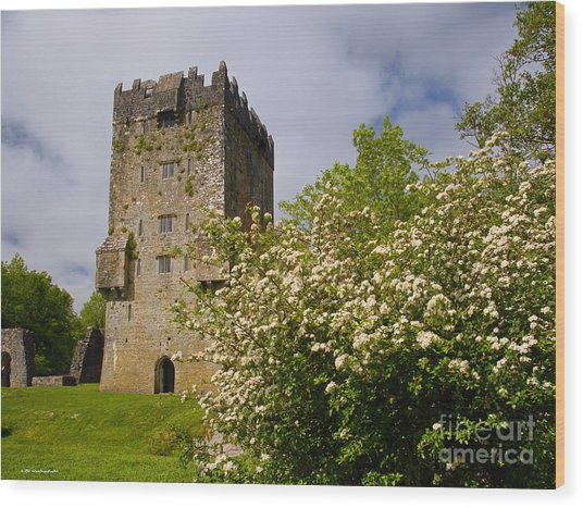 Irish Travel Landscape Aughnanure Castle Ireland Wood Print