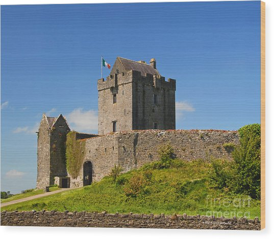 Irish Travel Landscape Dunguaire Castle Ireland Wood Print