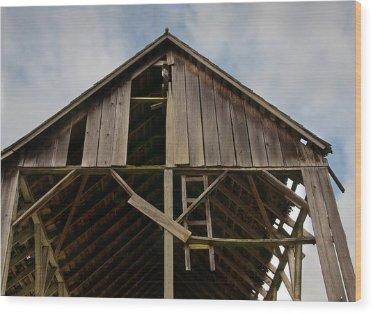 Is That All There Is Wood Print by Kent Sorensen