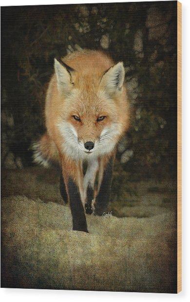 Island Beach Fox Wood Print