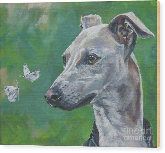 Italian Greyhound With Cabbage White Butterflies Wood Print