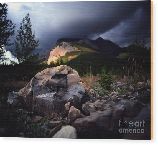 Jasper - Summer Storm Wood Print by Terry Elniski