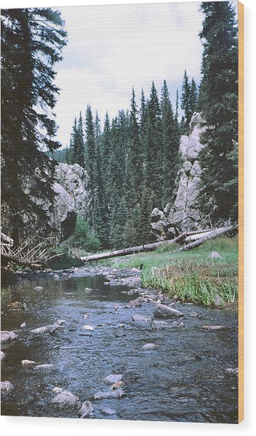 Jemez River Wood Print by Mirii Elizabeth