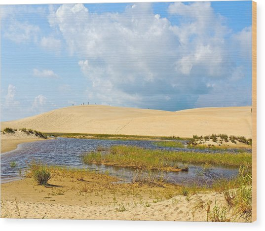 Jockey's Ridge Wood Print