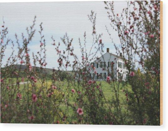Johnston House In Half Moon Bay Wood Print