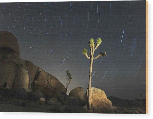 Joshua Tree Star Trails Wood Print