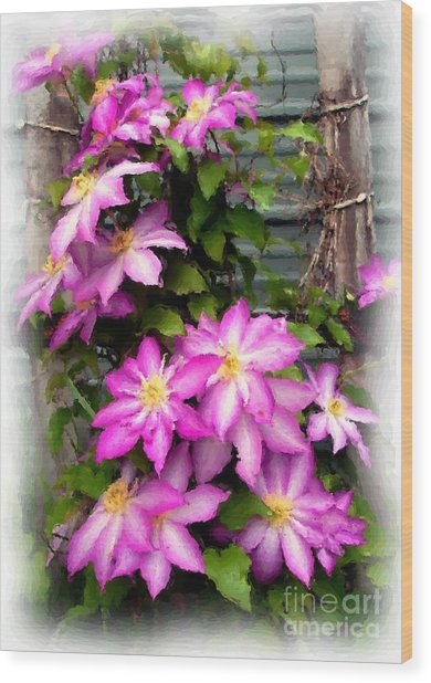 Joy Clematis Wood Print