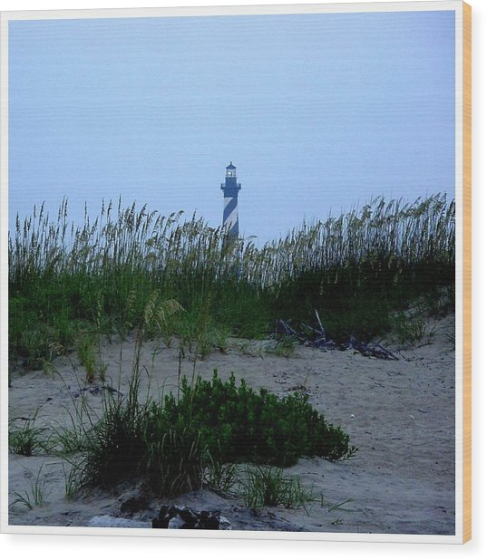 Just Beyond The Sea Oats Wood Print by Frank Wickham