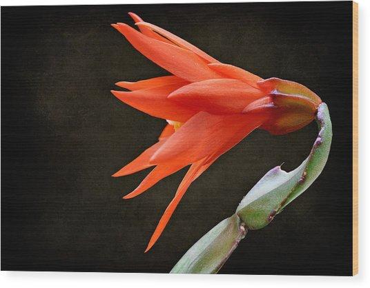 Just Flower V Wood Print