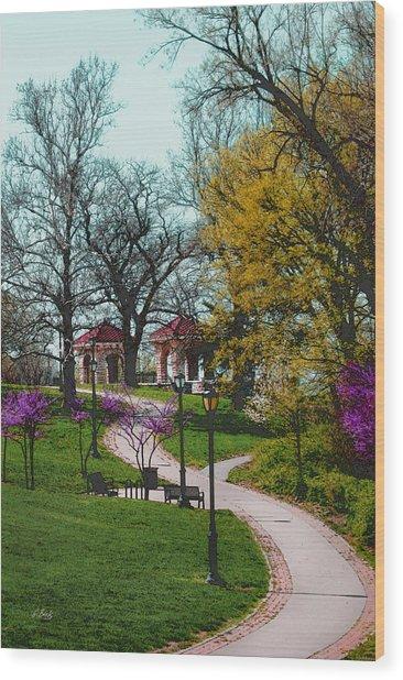 Kansas City Color Wood Print