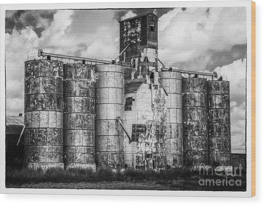 Kansas Grain Elevator Wood Print