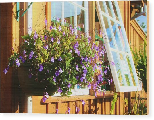 Kathy's Violet Basket Wood Print