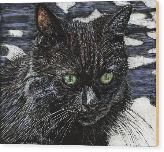 Katie The Cat Wood Print by Robert Goudreau