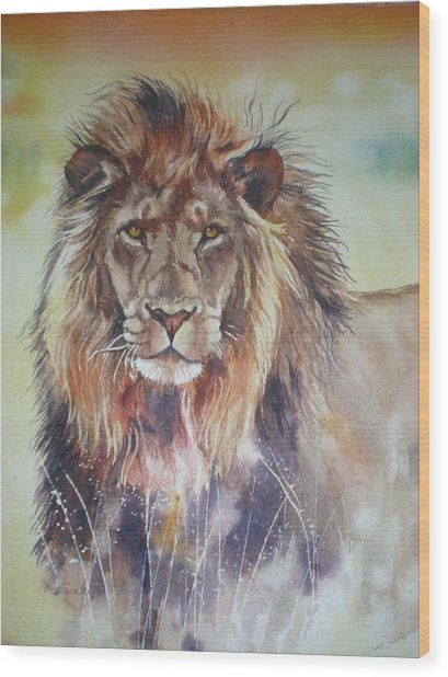 Kenyan Lion Wood Print by Sandra Phryce-Jones