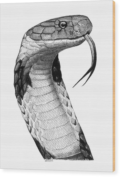 King Cobra Wood Print