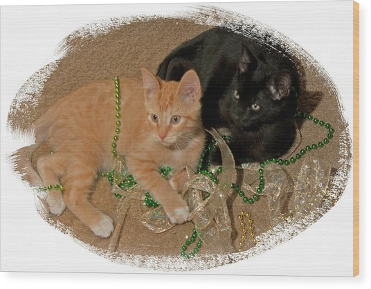 Kitten Brothers Wood Print