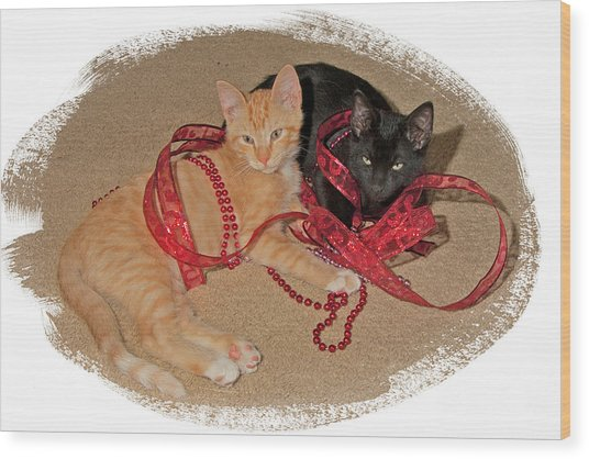 Kittens Ribbons And Beads Wood Print