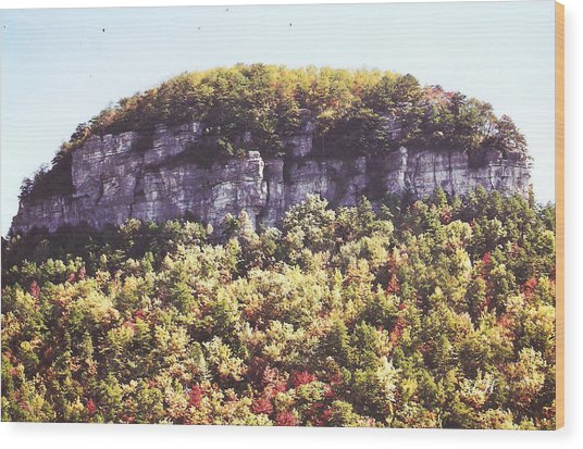 Knob Mountain Wood Print