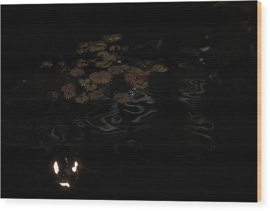 Koi In The Night Wood Print by Viktor Savchenko