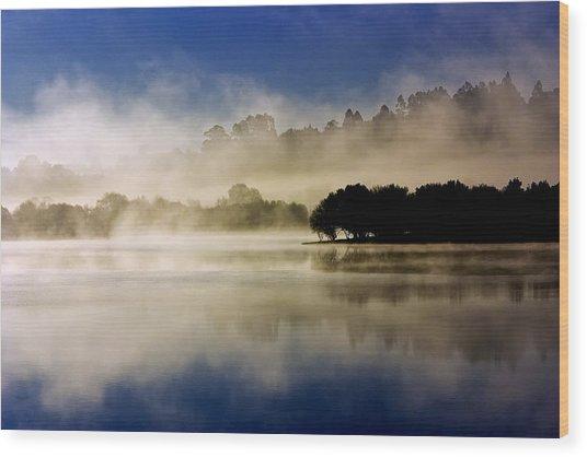 La Niebla Wood Print by Julio Beceiro